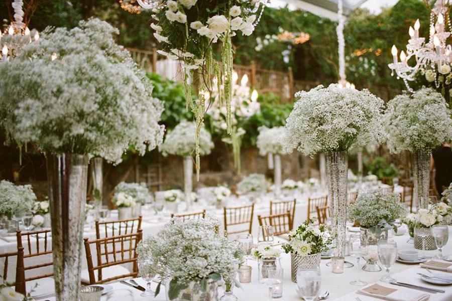 Làn gió tinh khôi với sắc trắng của hoa Baby khi trang trí tiệc báo hỷ ngoài trời